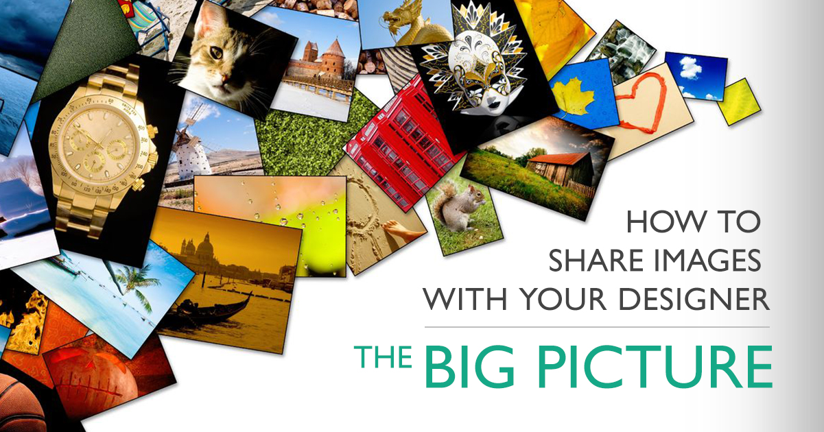 Images - The Big Picture